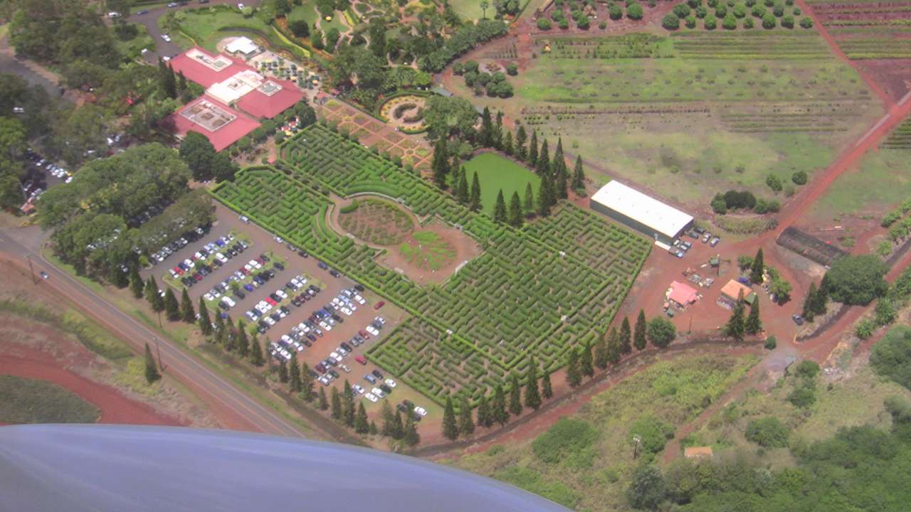 Dole plantation, the largest maze in the world.